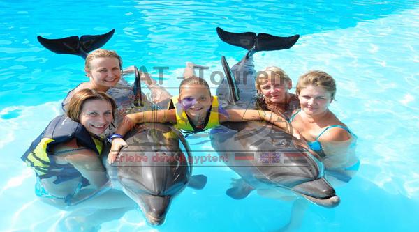 Dolphin_Show_World_Hurghada_4_at-touren.de