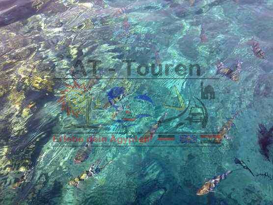 Utopia Island Insel Hurghada mit AT-Touren 4 (1)